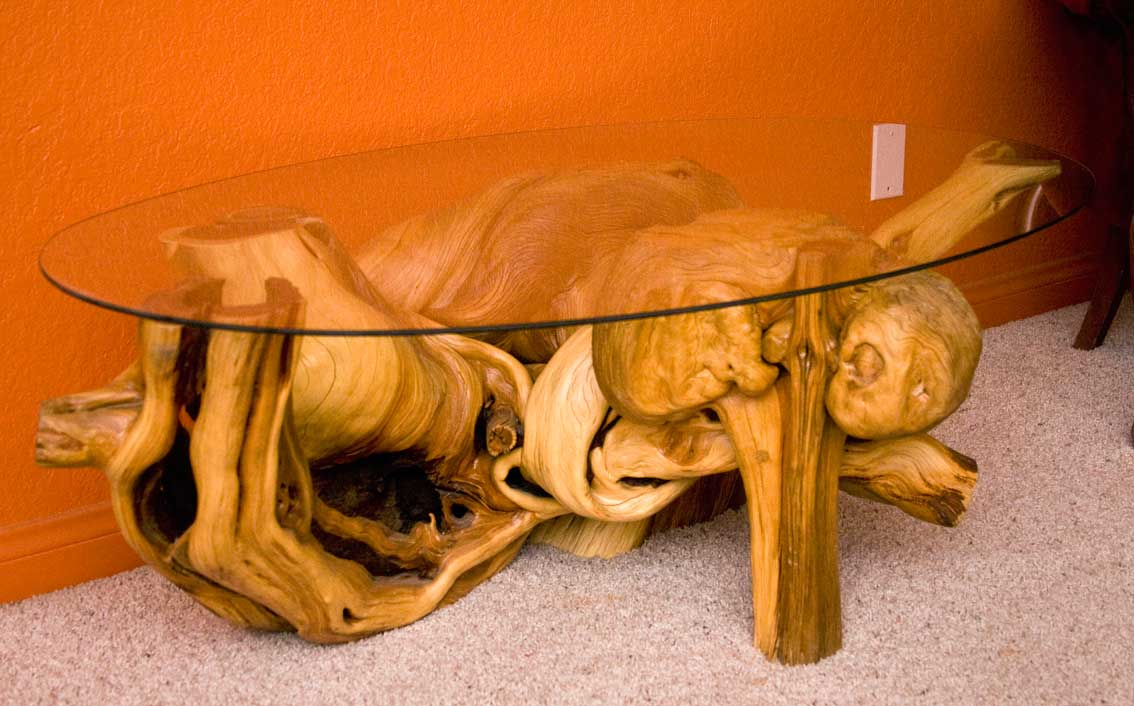 alligator juniper coffee table - stump shop