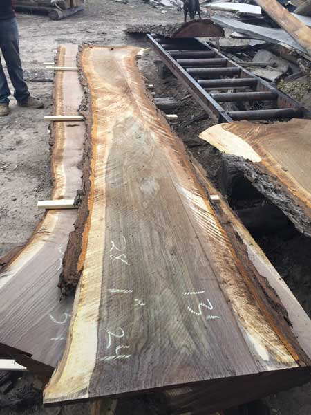 Measurements on a freshly cut slab