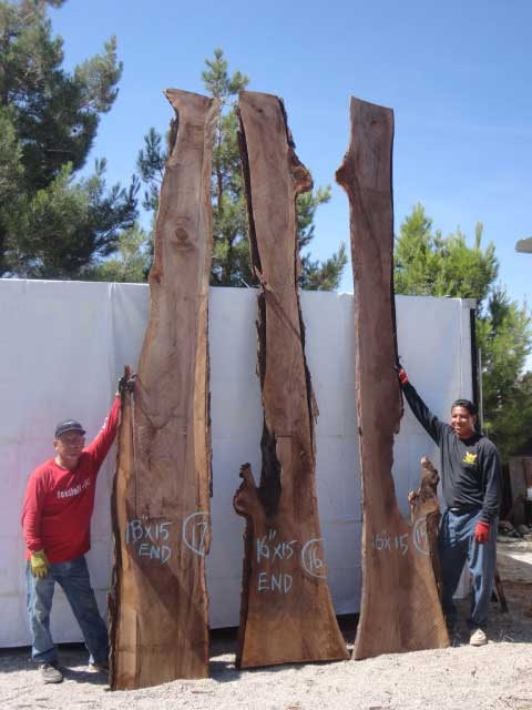Slabs for sale DIY. Men standing next to Walnut Slabs to show height in proportion